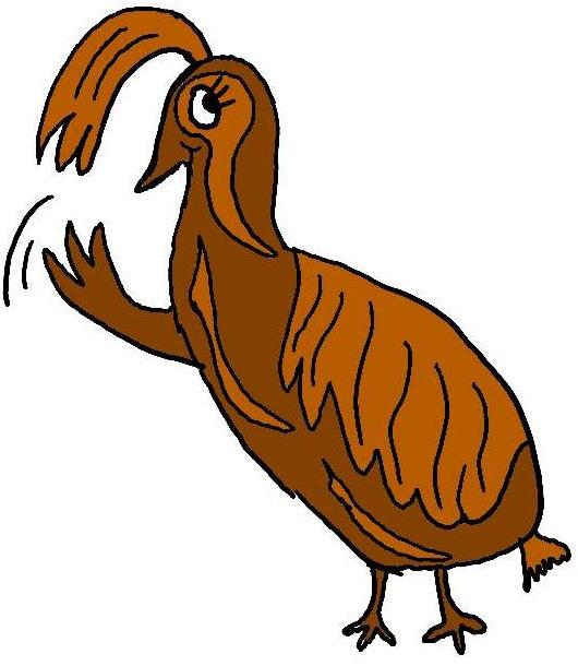 clipart of quail - photo #24