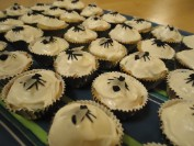 Ten plagues of egypt Fly Cupcake recipes