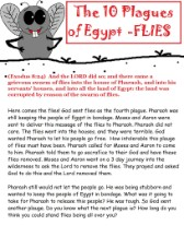 10 Plagues of Egypt Fly Sunday school Lesson